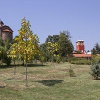 Манастир Жича - сръбска царска лавра