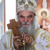 Крушевацки епископ Давид, СПЦ