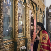 Посрещане на митрополит Антоний за св. Литургия